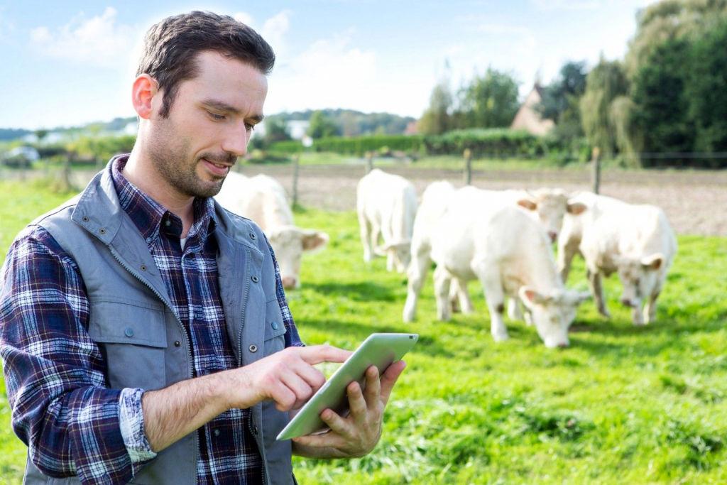 Landwirtschaft Singles